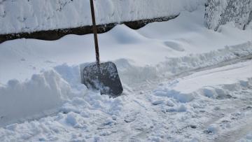 Петербуржцам предоставили графики вывоза снега и зачистки дорог