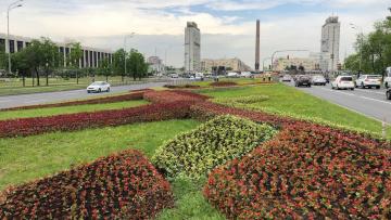 На Пулковском шоссе появился 3D цветник