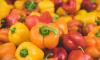 Таможенники изымают санкционный товар на Софийской овощебазе