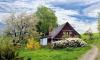 Большинство петербуржцев предпочитают проживать в частном доме