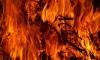 Двое малышей погибли страшной смертью при возгорании шалаша в лесу