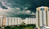 Комитет по природопользованию: Мониторинг воздуха Петербурга не выявил опасных загрязнений