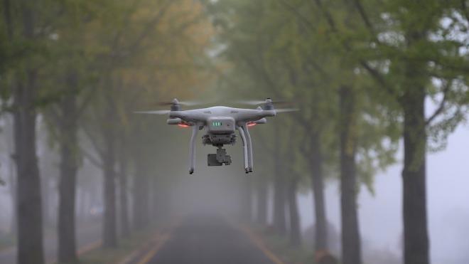 В России появится БПЛА для борьбы с боевыми дронами