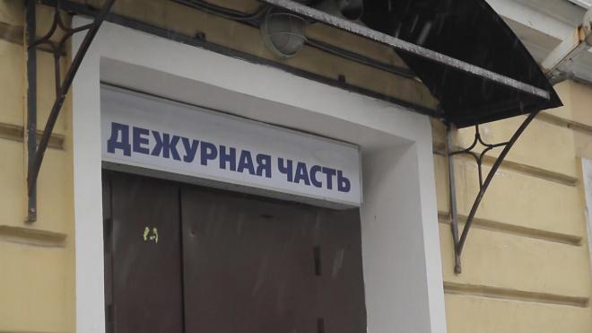 Мужчину, ударившего полицейского, задержали в Петербурге
