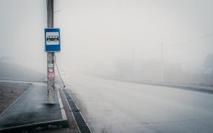 В Ленобласти выясняют обстоятельства драки на автобусной остановке