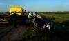 Два человека погибли в дорожной аварии под Кингисеппом