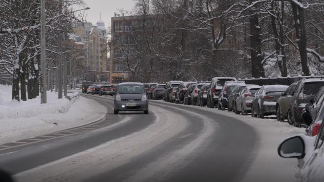За неделю в экологическую службу Петербурга поступило 216 обращений
