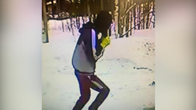 Неизвестный открыто похитил деньги из частного дома в поселке Юкки