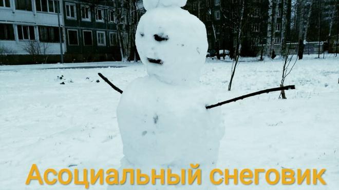 Жители Петербурга слепили креативных снеговиков