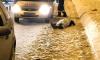 На Суздальском проспекте от сердечного приступа умер водитель загоревшегося авто