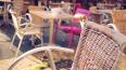 Правительство обсудило проблемы установки летних кафе в ...