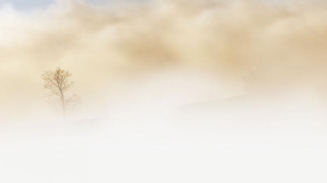 В понедельник в Северной столице ожидается туман