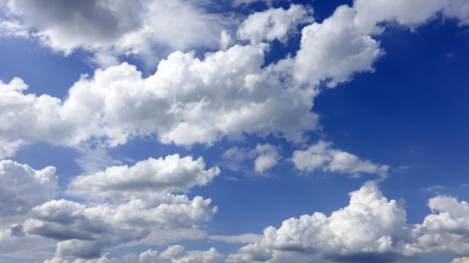 В Ленобласти 29 марта воздух прогреется до +11 градусов
