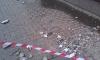 Москвич залез на крышу и забросал кирпичами прохожих, собак и машины
