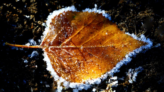 МЧС предупреждает о возможных происшествиях  в связи с похолоданием до -2 градусов