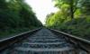 """У станции """"Новая деревня"""" поезд сбил упавшего на пути мужчину"""