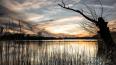 Власти объяснили передачу целого озера под юрисдикцию ...