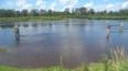 В Кузбассе за сутки утонули двое детей из многодетных ...