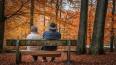 Минфин и ЦБ изменят систему пенсионных накоплений