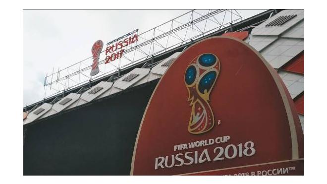 ФАС Петербурга нашел незаконные листовки с символом Кубка конфедераций