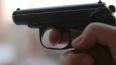 В США приемного ребенка убили выстрелом в голову