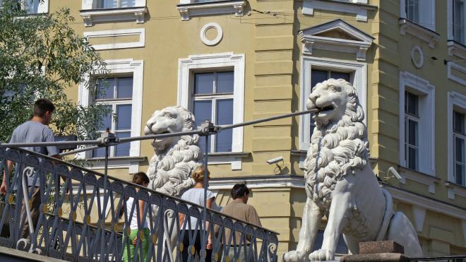 Полиция разыскивает вандалов, изрисовавших скульптуры на Львином мосту