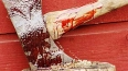В Ленобласти рецидивист зверски убил двух педагогов ...
