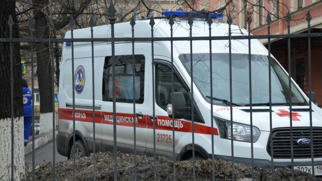 В Петергофе госпитализировали девочку, упавшую с высоты
