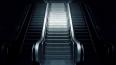Две женщины устроили жестокую драку на станции «Сенная» ...