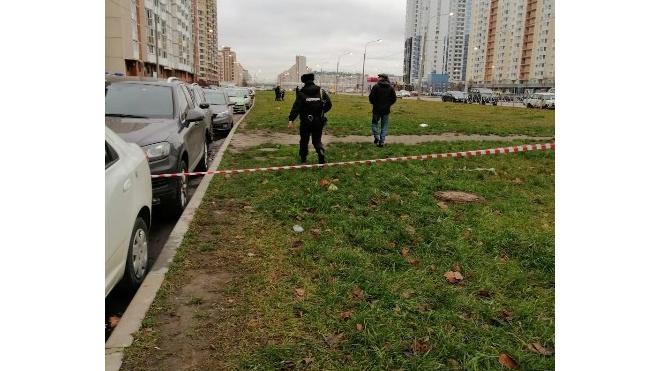 Жители Приморского района испугались гранаты на столбе