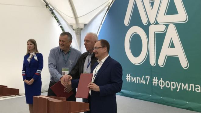 Для студентов Ленобласти новые возможности открывает СПбГУ