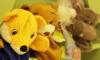 Число детей-сирот в Санкт-Петербурге сократилось до 1,4 тысяч за последнее пятилетие