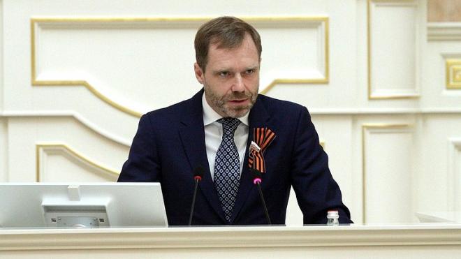 Сенатор от Петербурга выступил против налога на малодетность