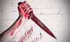 На улице Шелгунова психически больной мужчина убил и обезглавил соседа