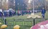 В Павловском парке второй день подряд толпились люди