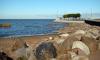 В Финском заливе спасли психбольного