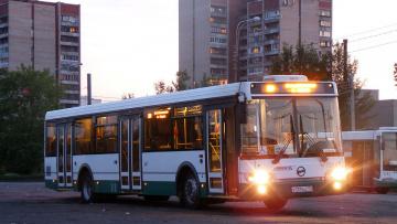 В праздники по улицам города запустят ночные автобусы