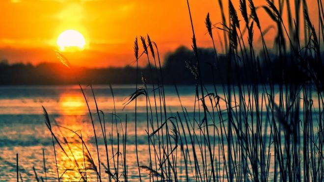 Список водоемов, пригодных для купания в Ленобласти, уменьшился