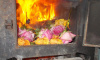 В Петербурге сожгли десять тысяч зараженных цветов