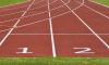 В Смольном хотят присваивать квалификационные категории спортивным тренерам