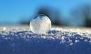 В воскресенье в Петербурге ожидается мокрый снег