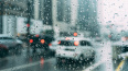 Во вторник в Петербурге пройдет мокрый снег с дождем