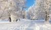 Зима 2015 года будет самой холодной за последние 5 лет