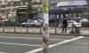 Чиновники Петербурга убрали назойливую рекламу со столба в фоторедакторе