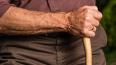 В Красном Селе злоумышленник избил и ограбил 90-летнего ...