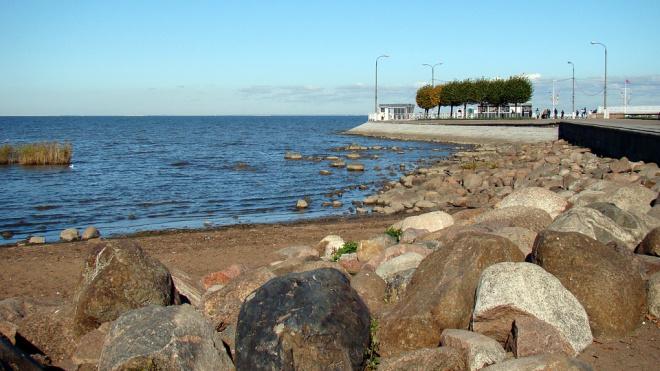 Специалисты: Финский залив обмельчал