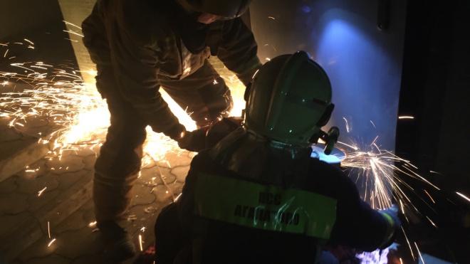 В Васкелово спасатели вытащили пса из плена металлической двери