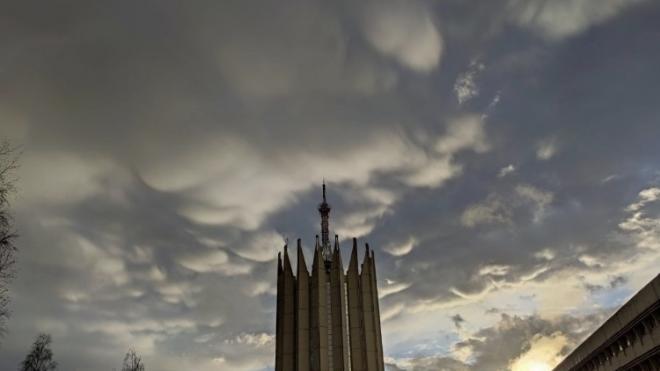 Над Петербургом заметили редкие облака