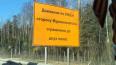 В Ленобласти водители обнаружили загадочное шоссе
