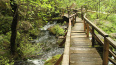 Вокруг озер в деревне Лопухинка продолжат экологическую ...